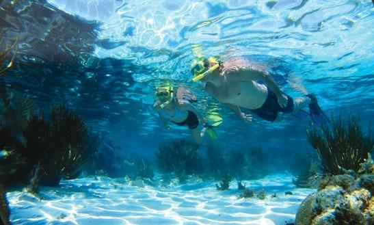 Snorkeling Safari Trips In Vasilikis