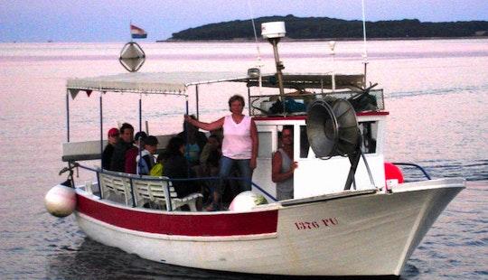 Wildlife Tour In Fažana Channel