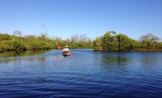 Go Kayaking In Bradenton, Florida