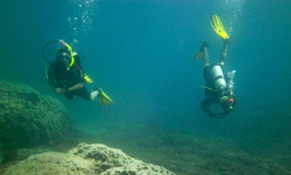 Scuba Diving In Panamá