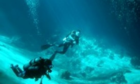 Diving Trips In Merida, Mexico