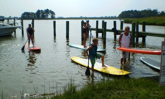 Paddleboards In Rock Hall, Md.