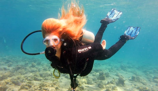 Daily Diving Trips & Courses From Eilat