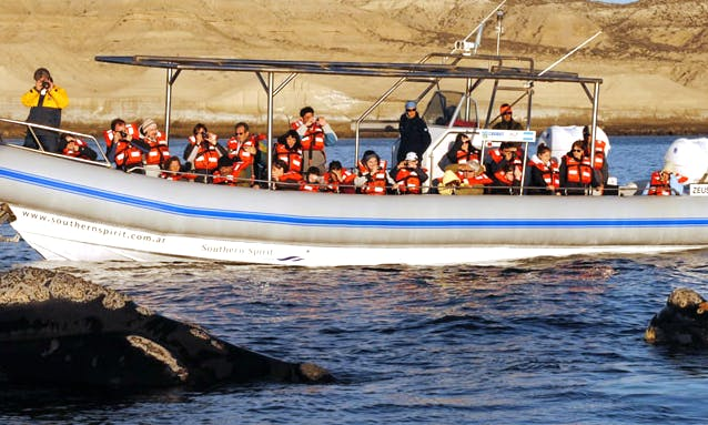 "42' ""ZEUS"" Whale Watching Trips in Chubut, Argentina"