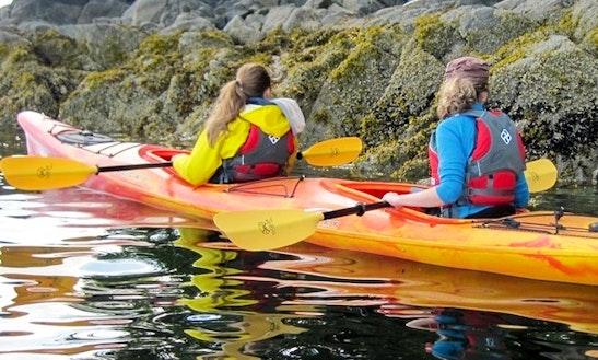 Tandem Kayak Rental In Deerfield Beach, Florida