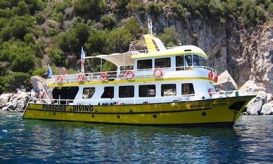 Paradise Boat Diving Trips In Armutalan Belediyesi