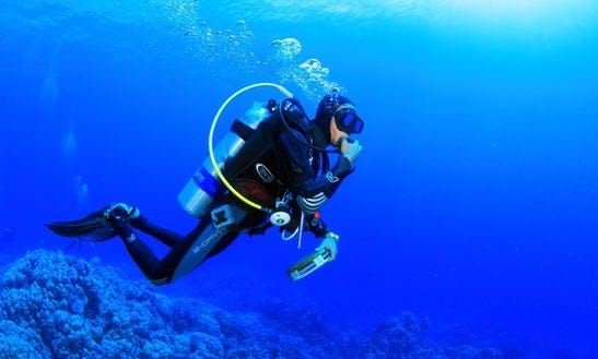 Padi Discover, Open Water And Advanced Courses In Dahab
