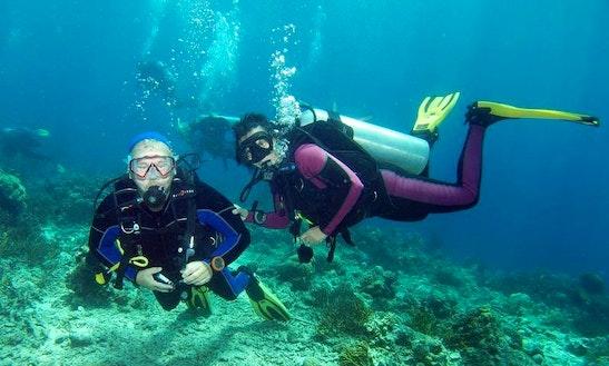 Diving Trips & Courses In Al Qusair