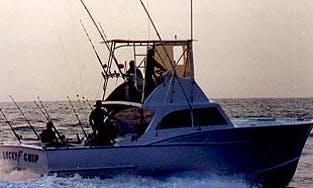 "38' Sport Fisherman ""Lucky Chip"" Fishing Charter In Hatteras, North Carolina"