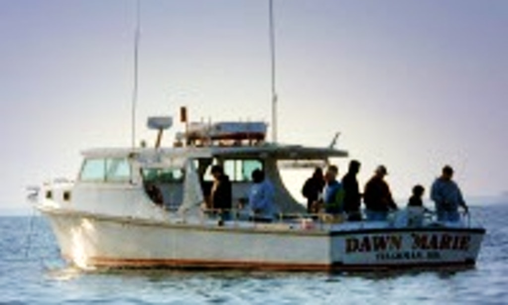 dawn marie head boat fishing charter in 5 bay hundred