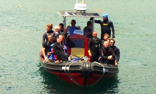 Diving Tour In A 28 Ft Rib For 16 People In Vila Franca Do Campo, Portugal