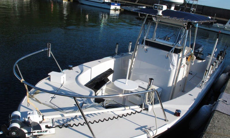 Toprun CS24 Boat Fishing Charter in Maibara-shi