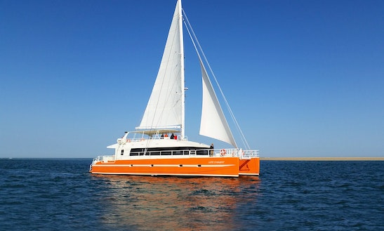 Discover Basin By Boat In Arcachon