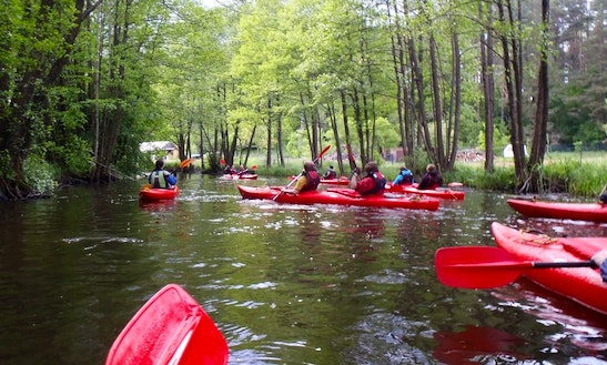 Double Kayak Rental In Parchowo