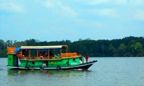 Passenger Boat Trips in Kumai