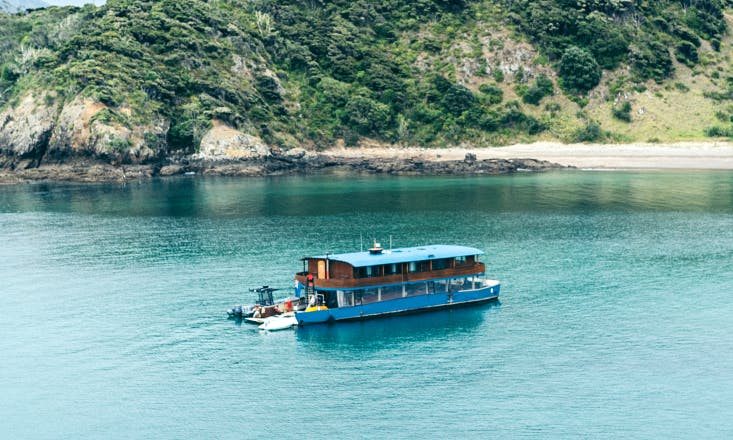 Houseboat Cruises in Paihia, NZ