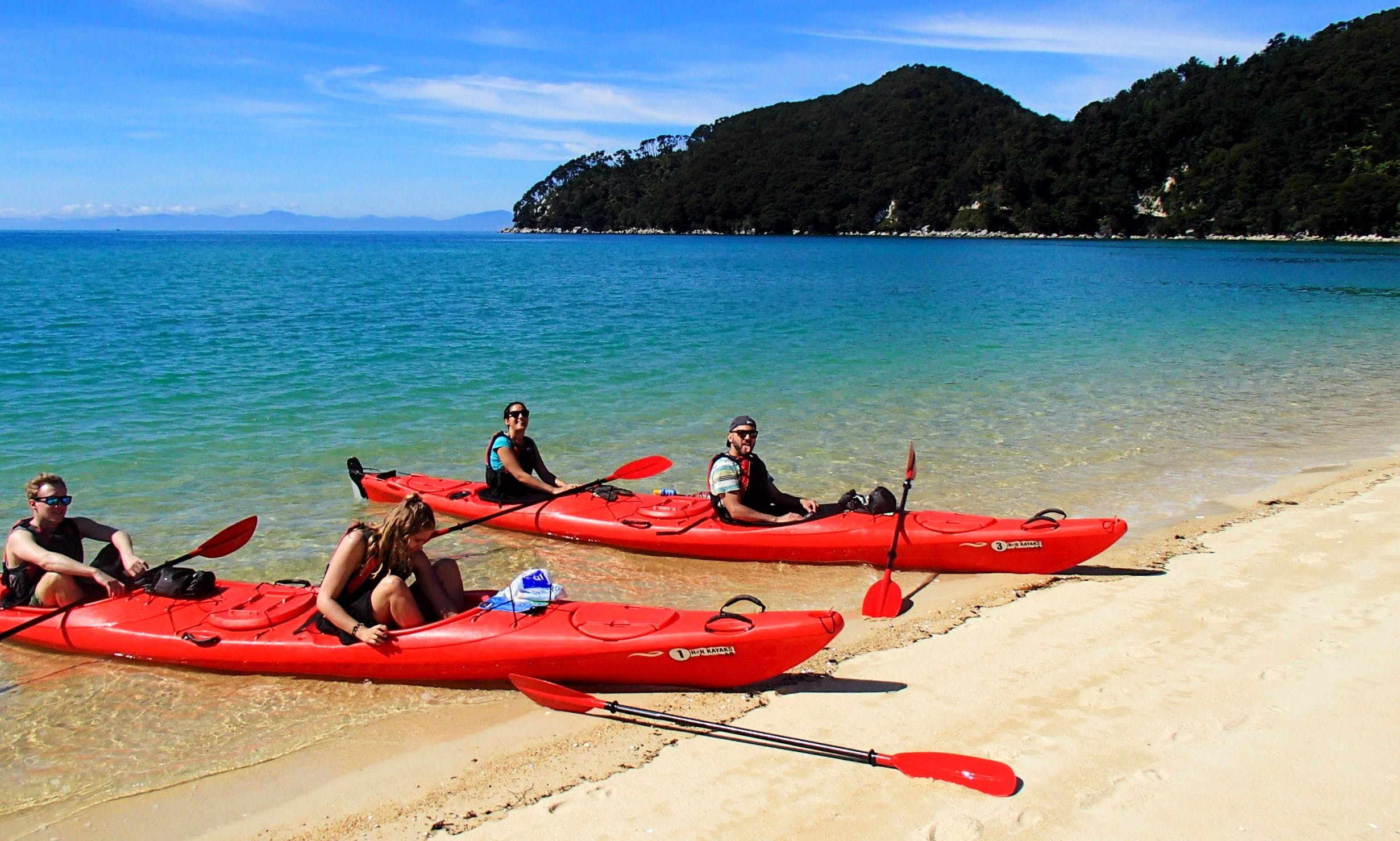 Guided Kayak Tour of Paradis Islands in Abel Tasman