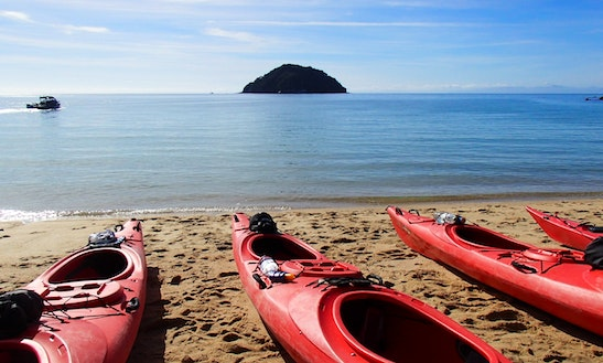 Guided Kayak Tour In Abel Tasman