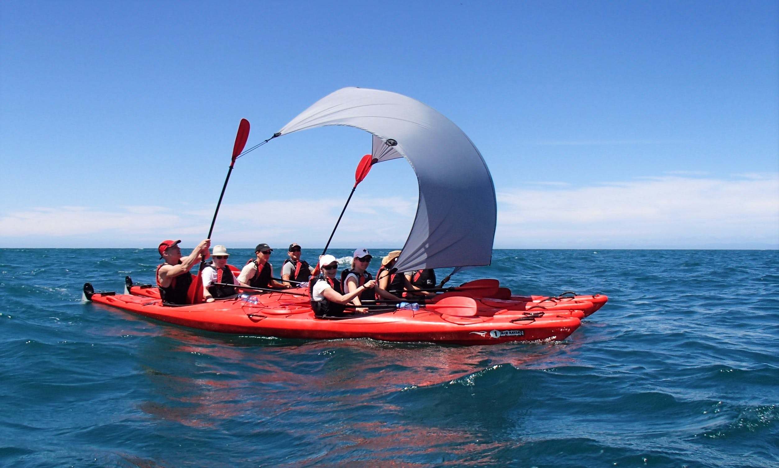 Guided Kayak & Walk in Abel Tasman
