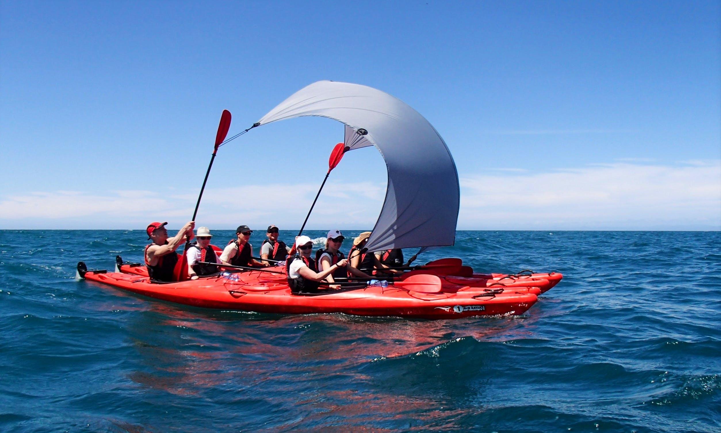 Guided Kayak & Walk in Abel Tasman