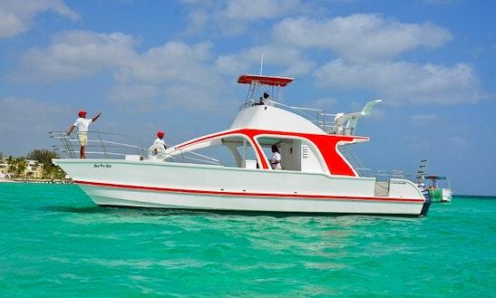 Private Catamaran Charter In Punta Cana, Dominican Republic