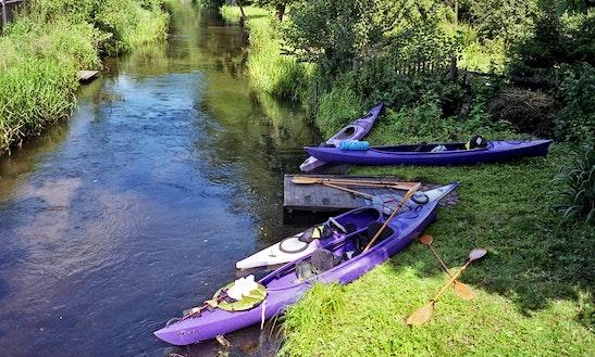 Kayaking Daily Trips In Swornegacie