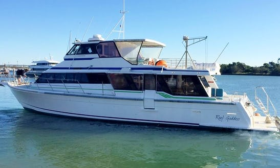 'reef Goddess' Boat Diving & Snorkeling Trips In Wongaling Beach