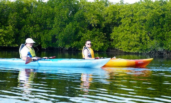 Come Out And Go Kayaking In Port Charlotte, Florida