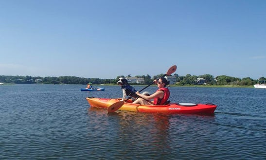 Rent A Single Kayak In Dennis Town, Massachusetts