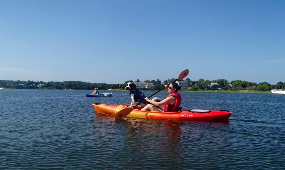 Rent a Single Kayak in Dennis Town, Massachusetts