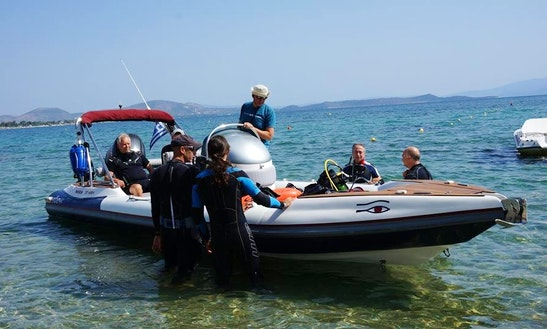 Boat Diving Trips To South Evoikos Gulf With Experienced Guides