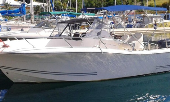 Rent The White Shark 226 Open Center Console In Basse-terre, Guadeloupe