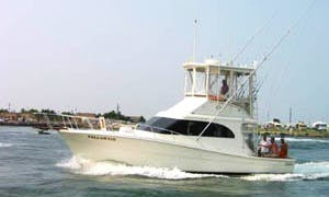 36' Sport Fisherman Fishing Charters in 5 Federalsburg, Maryland United States