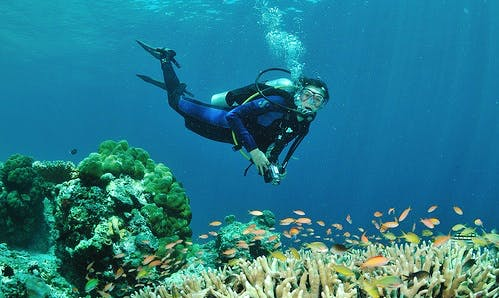 Diving Trip and Courses Kuala Besut