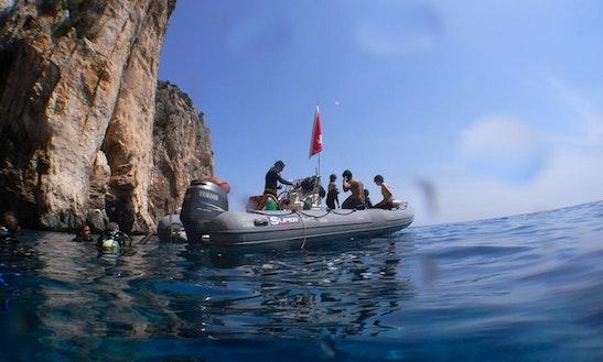 Boat Diving & Padi Courses In Baunei