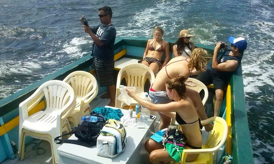 Passeio de Barco Lagoa da Conceição, Florianópolis