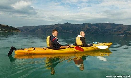 Double Kayaking Trips In Akaroa