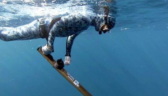 Diving Trips & Courses In Marathon, Florida