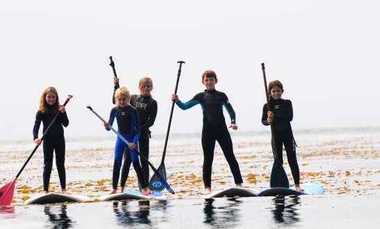 Paddleboard & Surf Rental & Lessons In Santa Barbara, California