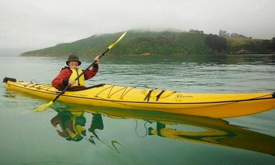 Single Kayaking Trips In Akaroa