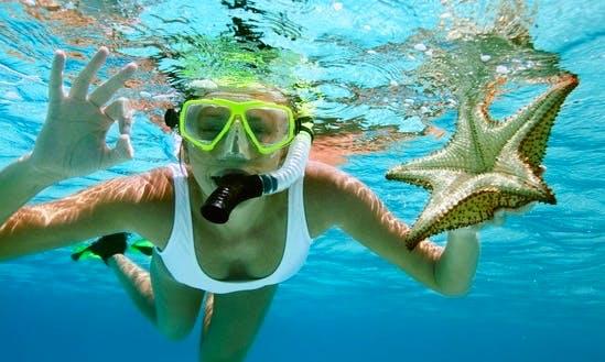 Snorkeling Tour in Kuala Besut