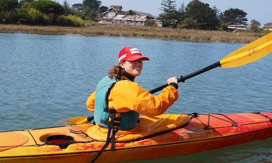 Hourly Single Kayak Hire In Auckland, New Zealand