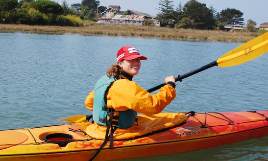 Single Kayak Hire In Auckland, New Zealand