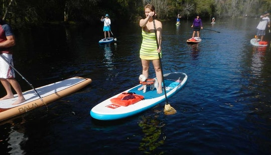 Paddleboard Rental & Tours In Kissimmee, Florida