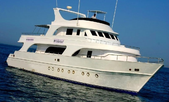 M/y Patriot Diving Safari Boat In As Sahel