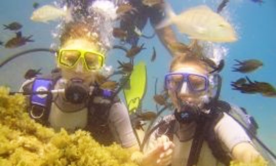 Diving Tour And Lessons  In Alanya