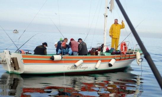 'mila Zarja' Boat Tours In Piran