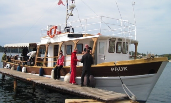 'pauk' Boat Diving Trips In Rovinj - Croatia