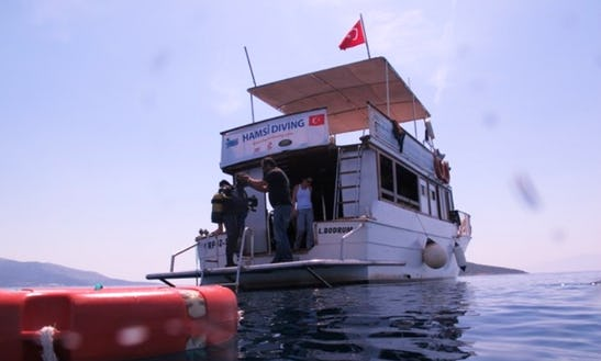 (30 Pax) Diving Boat Trips In Turkey