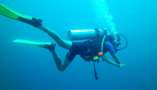 Enjoy Diving Trips And Courses In Davao City, Philippines